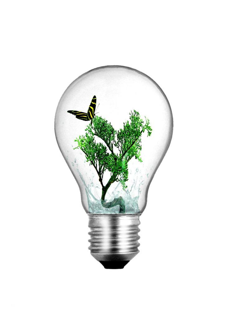Aryuna Idea verde